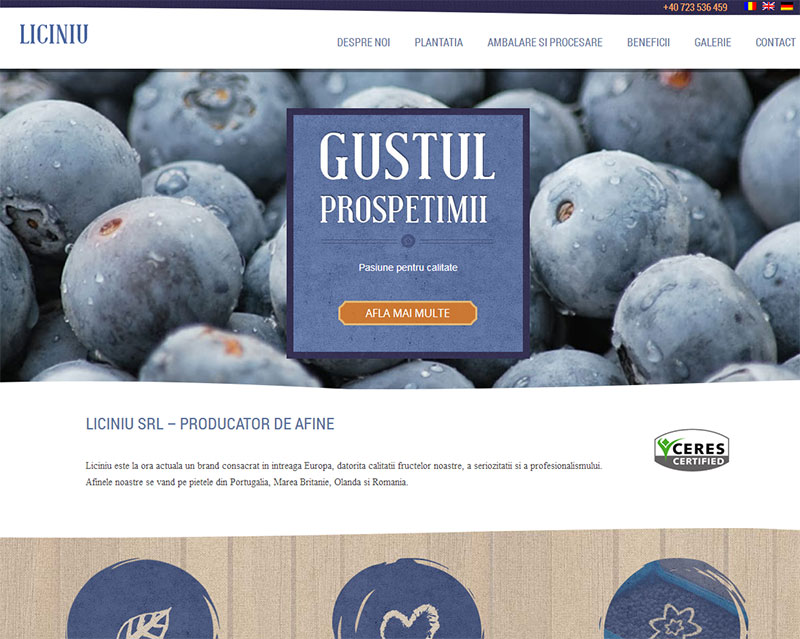 large_liciniu
